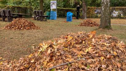 Herbstputzete 24.10.20